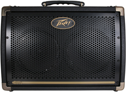 Peavey 50 Watts and below  peavey ecoustic e 208