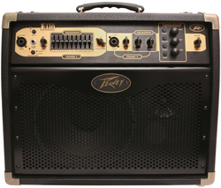Peavey 50 Watts and below  peavey ecoustic e 110